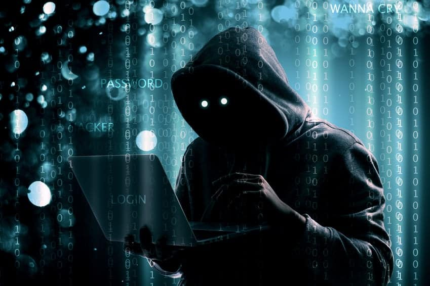 Hd Wallpaper Of Cute Teddy Bear The Funniest Hacker Stock Photos 4 0 The Future Of