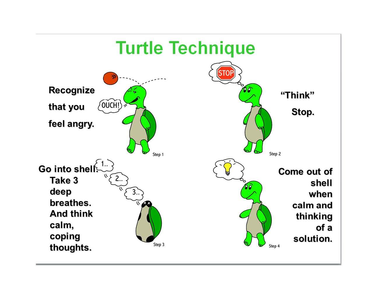 Tucker Turtle