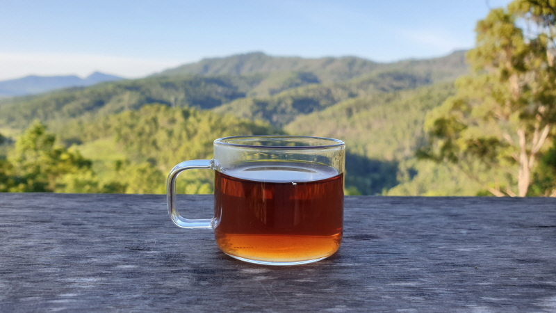 Teas for Breathing, Lung Cleanse, and Your Overall Respiratory System