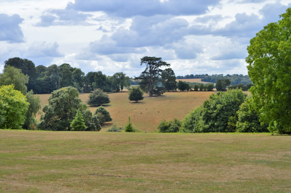 rolling hills by downton abbey
