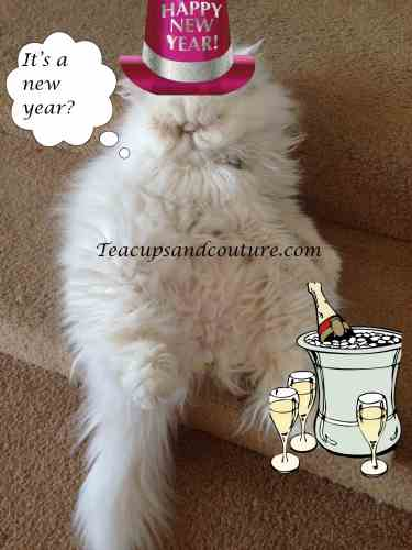 miggins new year