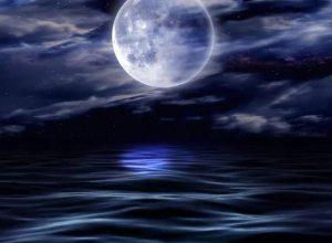 Water's Moon, Mirror's Flower