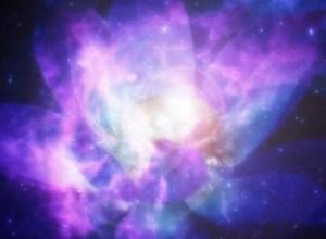 Postcard from Raymond: Cosmic Lotus