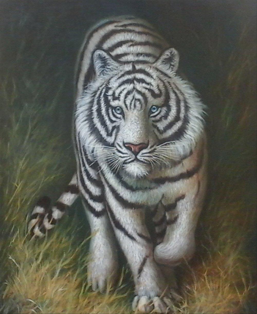 Gambar Harimau Putih : gambar, harimau, putih, Lukisan, Harimau, Putih, 1000x1221, Wallpaper, Teahub.io