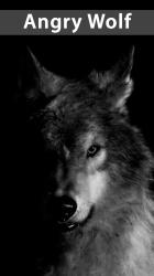 Amazing Wolf Wallpapers Angry Wolf 639x1136 Wallpaper teahub io