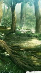 forest anime fantasy teahub io