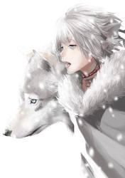 Anime Boy Wolf Animal Ears Gray Hair Furry Sharp Anime Wolf Boy With White Hair 728x1034 Wallpaper teahub io