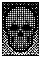 Diamond Skull / White
