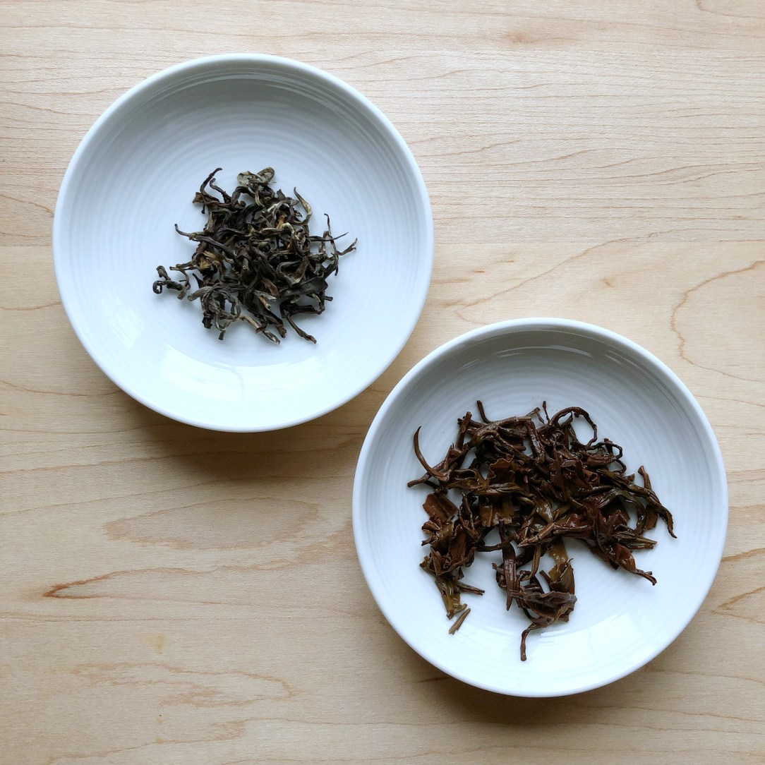 Nepal Tea LLC Shangri-La Oolong Dishes