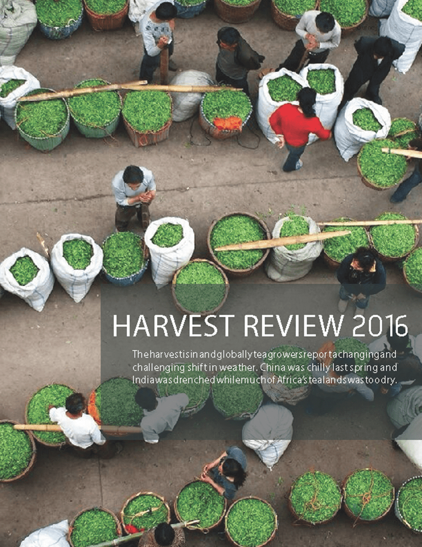 TJ2_Draft_20160829_lorez Harvest Review Cover_850px
