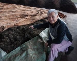 Tea master Vesper Chan