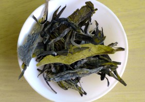Tea Studio Long Jing 1