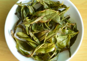 Tea Studio Long Jing Infusion