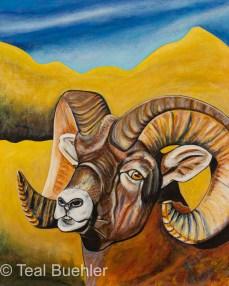 Big Horn Sheep - 16 x 20 Acrylic on Canvas Board