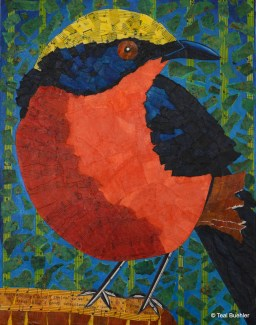 SOLD - Yellow Crowned Gonolek - 11x14 Collage on Canvas Board