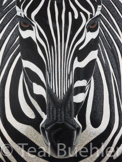 Zebra - 22x30 on Cold Pressed Lanaquarelle Water Color Paper 300 lb