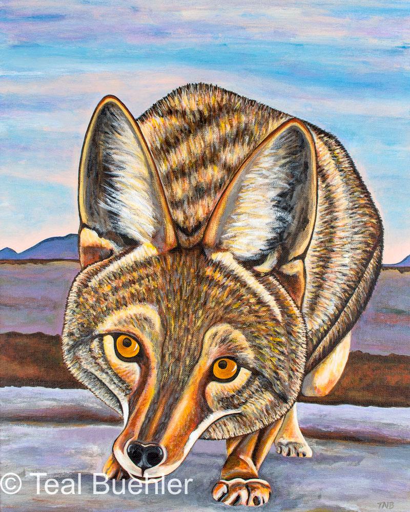 Desert Fox - 16 x 20 Acrylic on Canvas