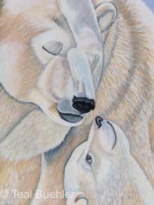 Polar Bear Love - 18x24 Stretched Canvas