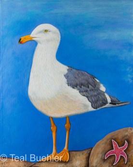 Seagull - 16 x 20 Acrylic on Canvas