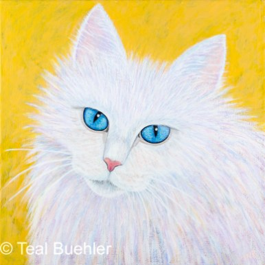 SOLD - Fluffy White - 12x12 Acrylic on stretched canvas