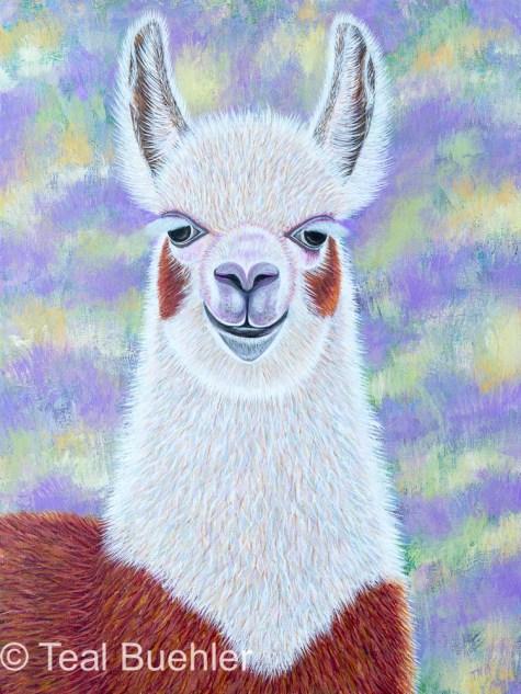 Lavender Llama
