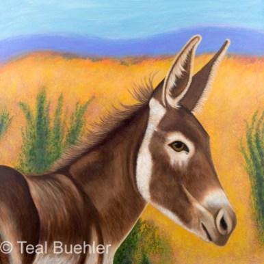 SOLD – Desert Burro – 36×36 acrylic on canvas