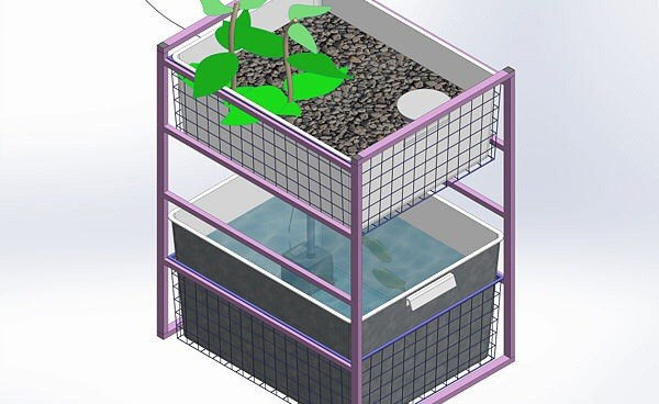 DIY Saturday #2 – Indoor Aquaponics