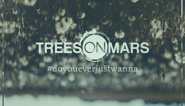 Interview with Hayden Graham (Trees on Mars)