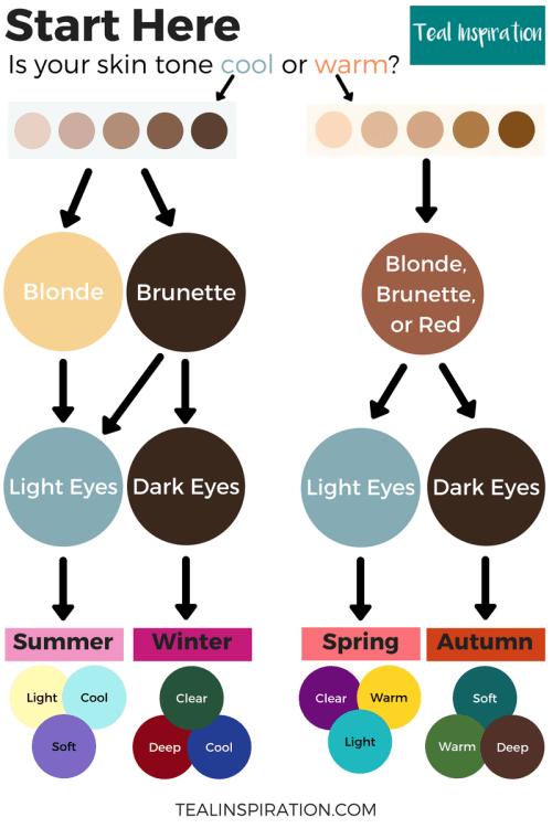 Seasonal Color Analysis Flowchart