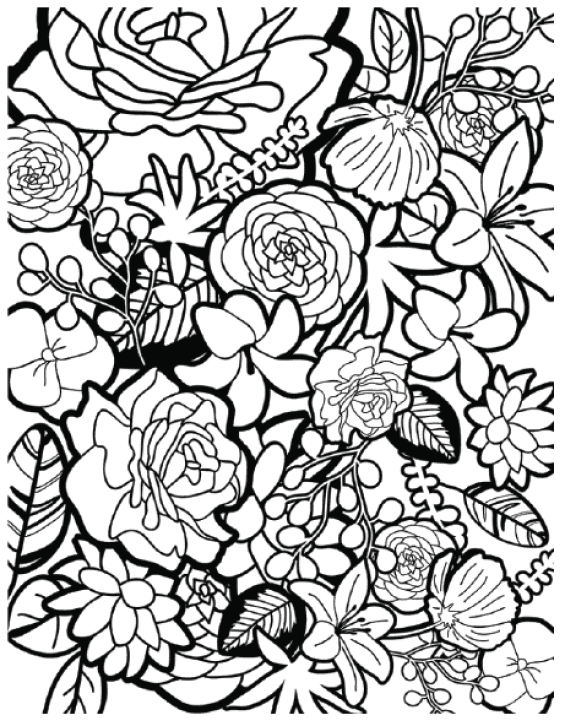 free coloring page roses