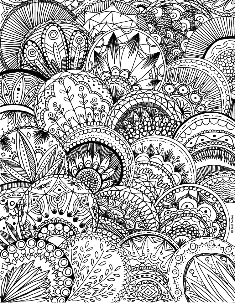 475 Best Free Coloring Pages for Adults images | Adult coloring ... | 971x750
