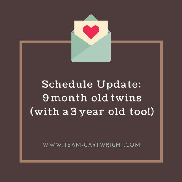 Schedule Update: Nine month old twins (with a three year old too!)