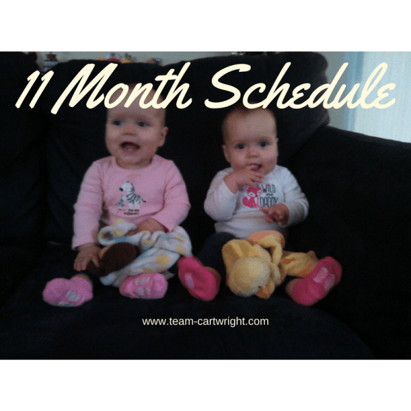 Eleven month update and schedule