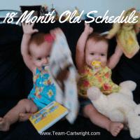 18 Months Old Twins Schedule