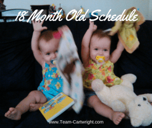 18 month old twin schedule.