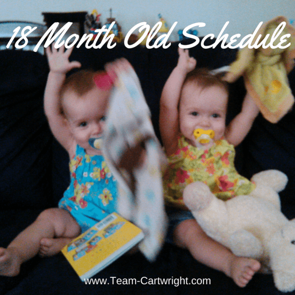 18-month-old twin schedule update
