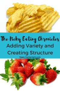How to add variety to your picky eater's meals and create a structure that encourages healthy eating habits. #picky #eating #kids Team-Cartwright.com