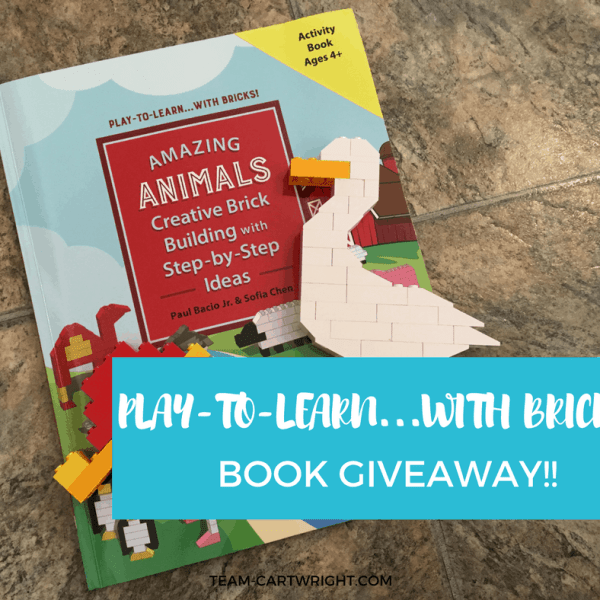 Play-To-Learn…With Bricks (Plus a Giveaway!!)