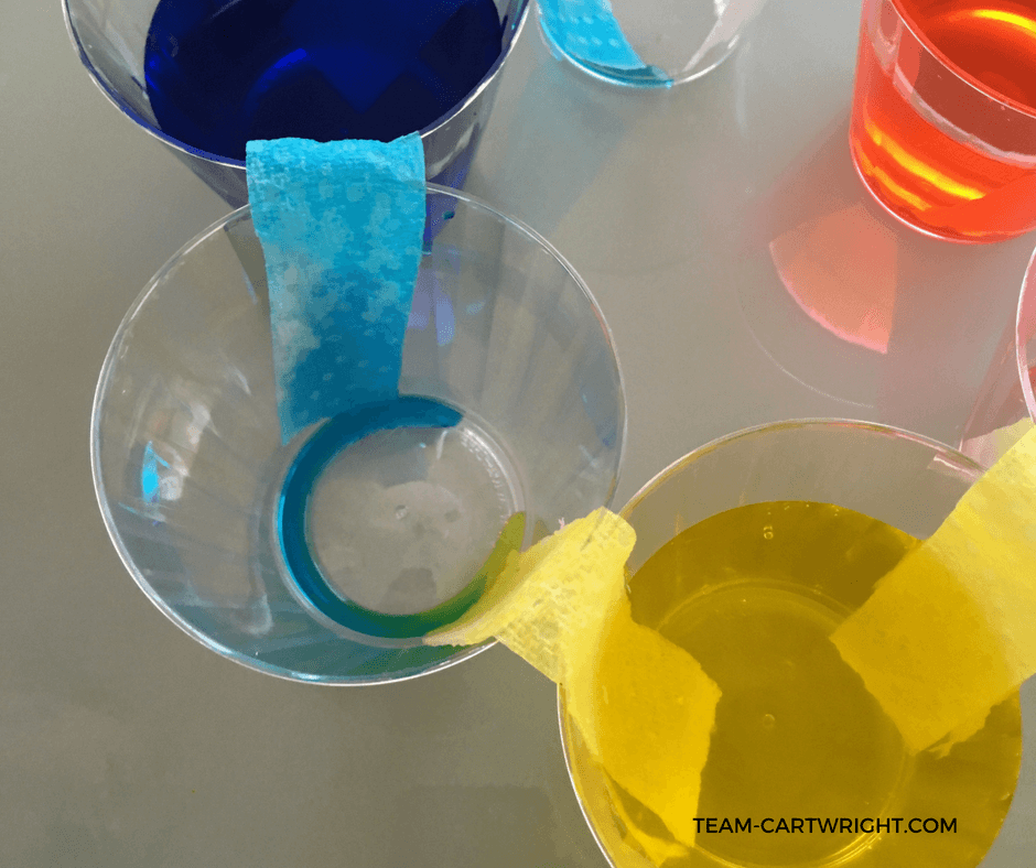 Teach your children about how we see colors and how they mix using a simple color wheel. Watch the water walk from cup to cup and learn why rainbows look the way they do. #colorchemistry #walkingwater #preschoolSTEM #toddlerSTEM #preschoolscienceactivity #homeschool #toddlerlearningactivity #colorlearningactivity #teachcolors #rainbowlearningactivity #easylearningproject Team-Cartwright.com