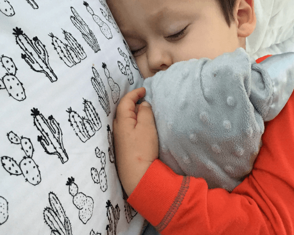 Sleep Habits for Older Children and Why Babywise is Awesome
