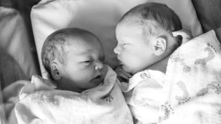 Twin Z vs My Brest Friend Twin: Which Twin Breastfeeding Pillow Is Best?
