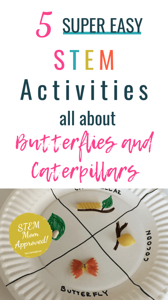 5 Super Easy STEM Activities all about Butterflies and Caterpilars