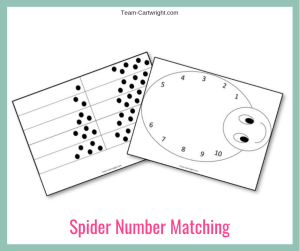 Spider Number Matching Printable Worksheets