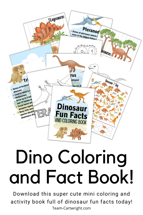Text: Dino Coloring and Fact Book! Download this super cute mini coloring and activity book full of dinosaur fun facts today! Picture: Collection of some of the pages in the dinosaur book