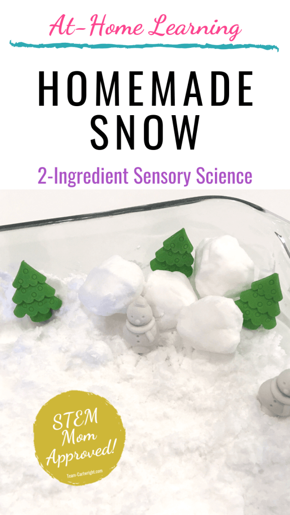 Homemade Sow 2-ingredient sensory science