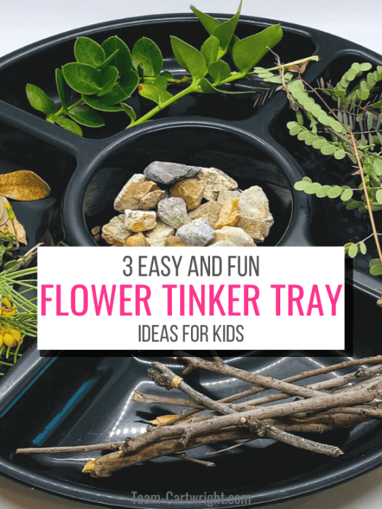 Text: 3 Easy and Fun Flower Tinker Tray Ideas for Kids. Picture: Flower tinker tray with nature materials