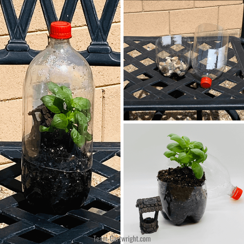 Top right picture: soda bottle terrarium in progress with rocks at the bottom. Bottom left picture: Open diy terrarium with plant and wishing well garden decoration. Left picture: compelted bottle terrarium for kids with plant inside.