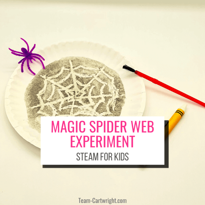 Text: Magic Spider Web Experiment STEAM for Kids; Picture: paper plate with magic spider web that appeared once painted black