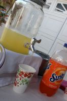 Lemonade and other refreshments