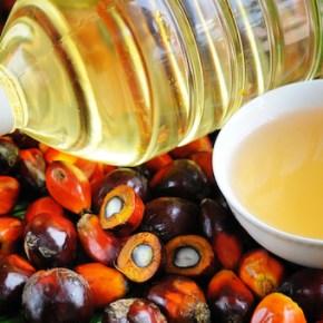 Olio di palma, di girasole o di mais? Piuttosto il burro
